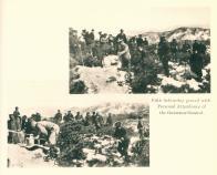 제5회 기념식수일(1915년)