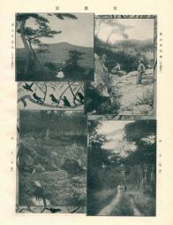 용산 효창원 풍경(남산, 대암석, 계류, 밀림)
