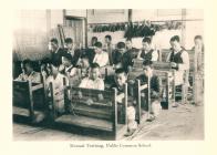 공립보통학교 실과수업