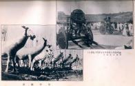 인산행렬의 방상씨와 죽산마