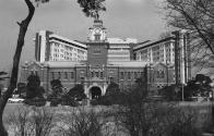 서울대학교 병원