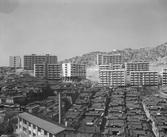 금화시범아파트와 냉천동, 옥천동 일대의 한옥군