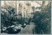 창경원 식물원 내부