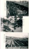 개성 인삼밭과 채하동